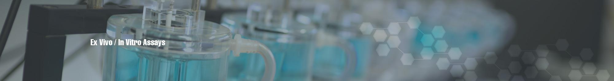 ex vivo in vitro assays